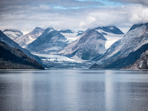 Ecosystem「Snowy Mountains and Tidal Inlet in Glacier Bay National Park」:スマホ壁紙(4)