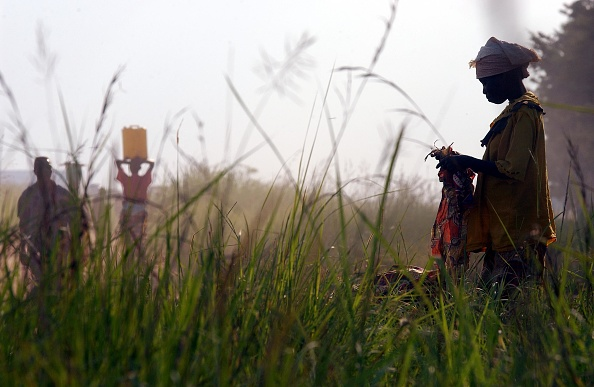 Grass「Bunia Remains Calm After French Troops Arrive」:写真・画像(17)[壁紙.com]