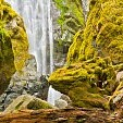 アンプクア国定森林壁紙の画像(壁紙.com)