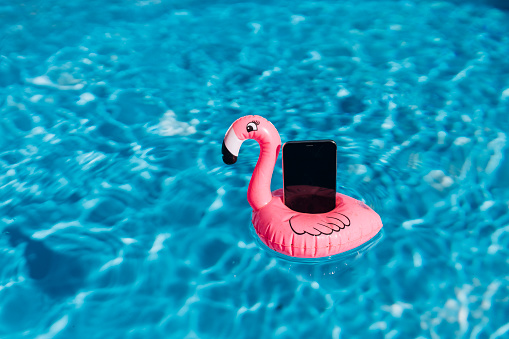 Water Surface「Smartphone on pink flamingo float in swimming pool」:スマホ壁紙(2)