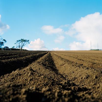 Plowed Field「Freshly Plowed Field of Dirt」:スマホ壁紙(8)