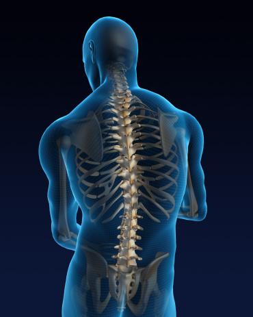 Pain「Human back」:スマホ壁紙(18)