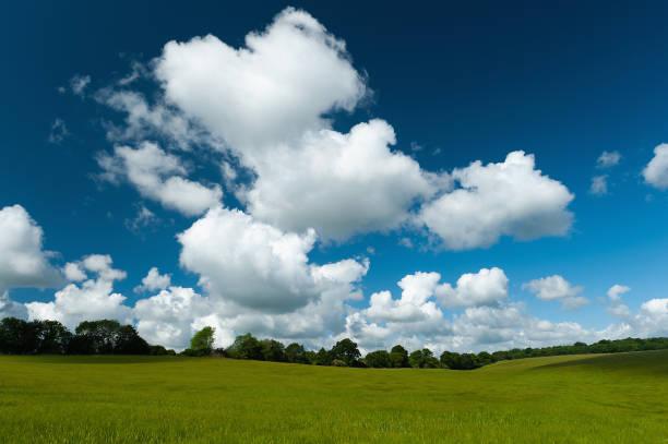 Cloud, field and blue-sky background.:スマホ壁紙(壁紙.com)