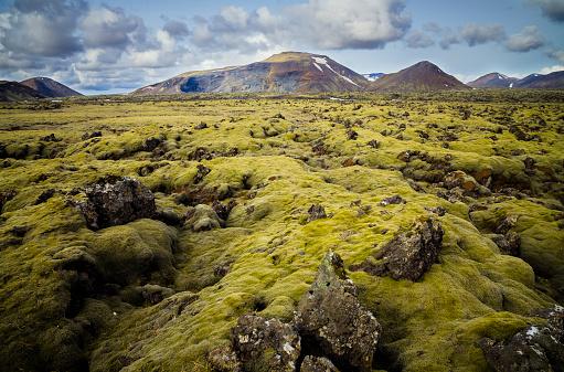 Lava Plain「Iceland, South of Iceland, moss-grown volcanic rock」:スマホ壁紙(11)