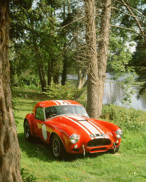 Grass Family「1964 AC Cobra Le Mans」:写真・画像(13)[壁紙.com]