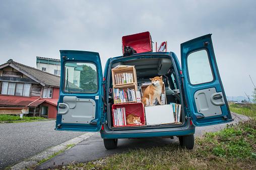 Cat「A moving Bookstore」:スマホ壁紙(18)