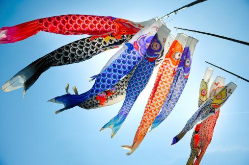 Koi Carp「Koinobori (koi shaped japanese kite)」:スマホ壁紙(3)