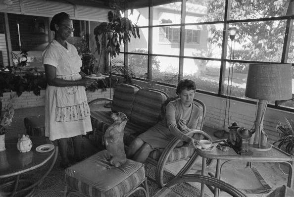 Domestic Animals「Housemaid」:写真・画像(11)[壁紙.com]