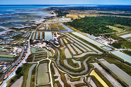 Nouvelle-Aquitaine「Salt Ponds on the Ile de Oleron, France」:スマホ壁紙(16)