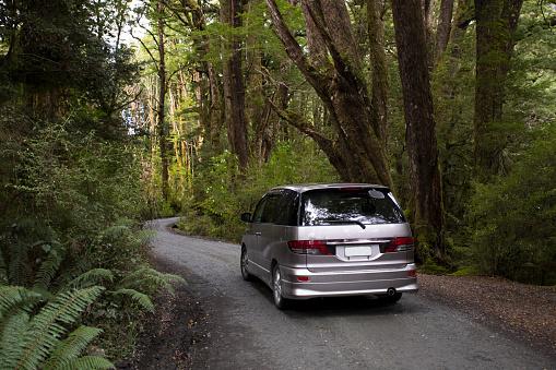 Fiordland National Park「A drive through Fiordland National Park.」:スマホ壁紙(19)