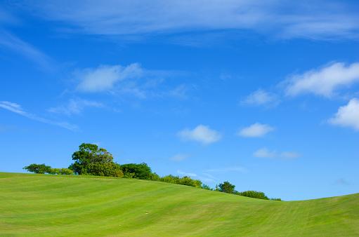 Grass Area「Green fields and blue sky」:スマホ壁紙(17)