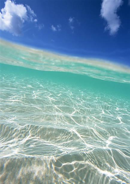 透明な海のまとめ:2010年11月17日(壁紙.com)