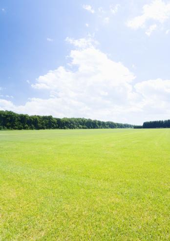 Hokkaido「Blue sky and lawn」:スマホ壁紙(19)