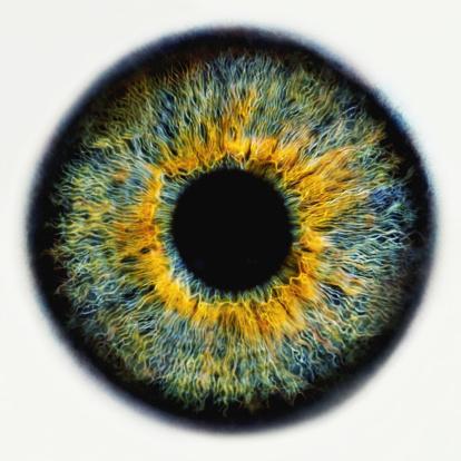 Iris - Eye「Iris of eye, close-up (Digital Enhancement)」:スマホ壁紙(4)