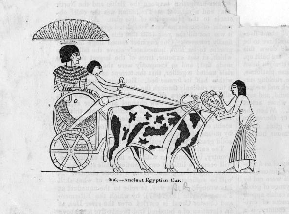 Wheel「Ancient Traffic」:写真・画像(3)[壁紙.com]