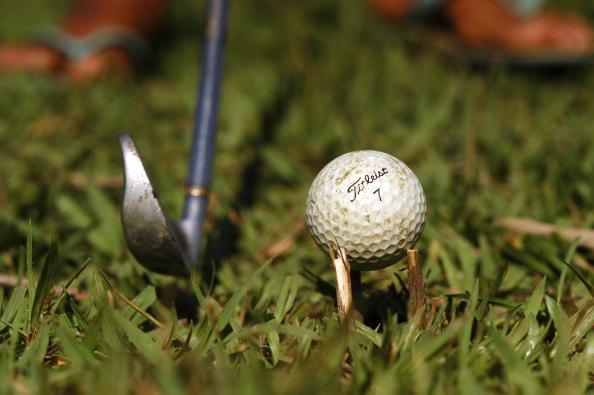 Grass「Brazilian Caddies Secure Seed Capital To Develop Golf Course」:写真・画像(11)[壁紙.com]