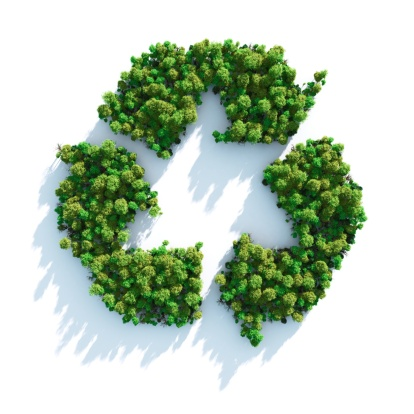 Environmental Cleanup「Recycle sign made of green trees」:スマホ壁紙(15)