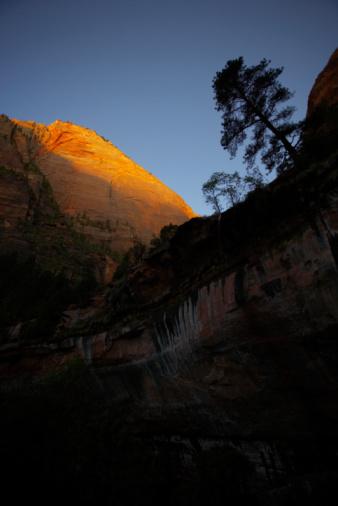 Sedona「Zion National Park」:スマホ壁紙(16)