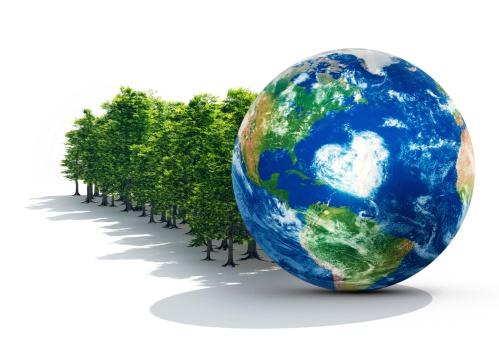 Lumber Industry「Earth In Healthy Forest」:スマホ壁紙(2)