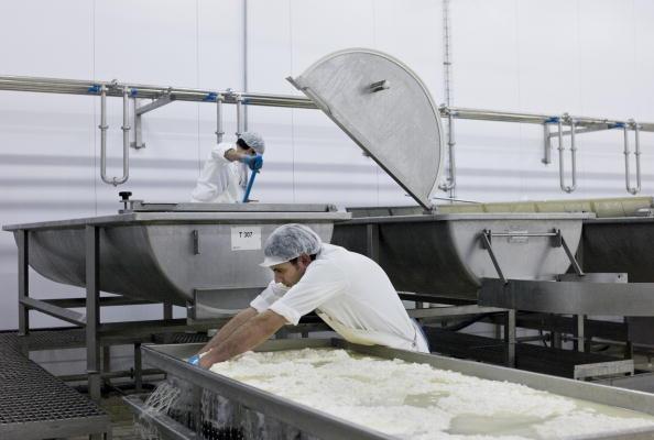 Cheese「Argos Region, Greece」:写真・画像(15)[壁紙.com]