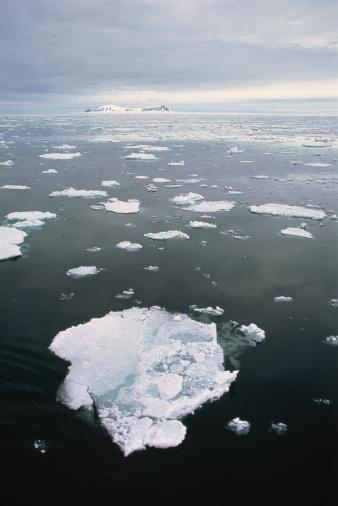 Pack Ice「Coastal pack ice breacking up in spring melt,Spitzbergen,Norway」:スマホ壁紙(10)