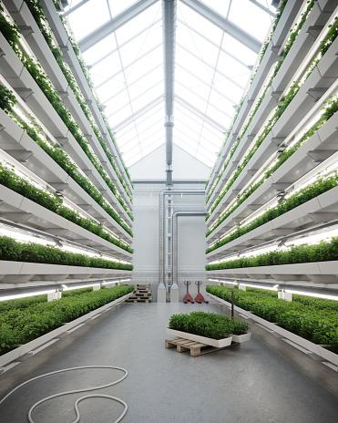 Intelligence「Digital image of a vertical farm greenhouse」:スマホ壁紙(4)