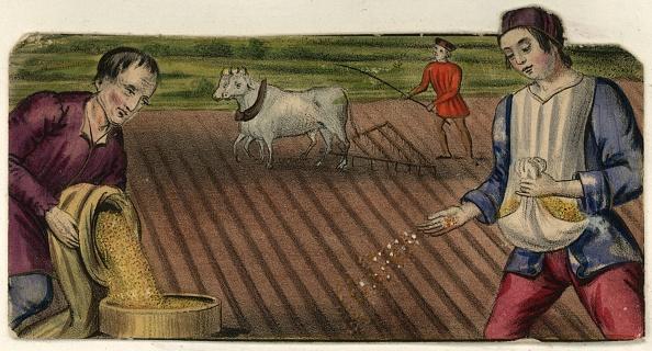 Medieval「Sowing Seeds」:写真・画像(2)[壁紙.com]