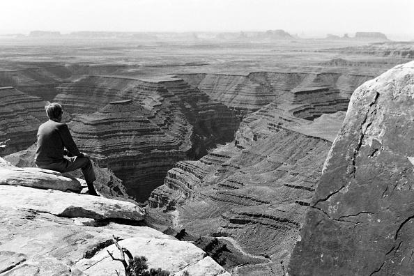 Curve「Utah」:写真・画像(0)[壁紙.com]