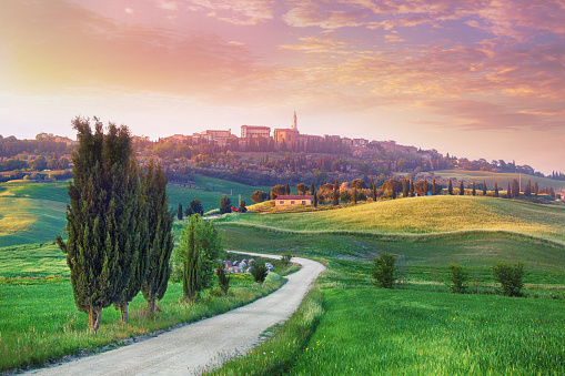Italian Cypress「Landscape in Tuscany with the small town of Pienza in the background」:スマホ壁紙(19)