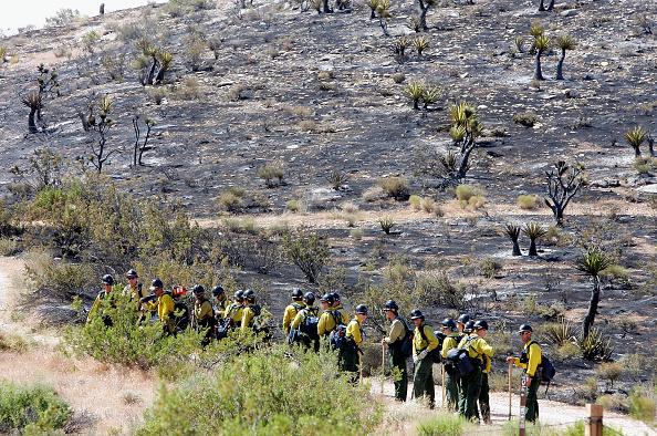 Grass「Wildfires Burn In Nevada」:写真・画像(6)[壁紙.com]