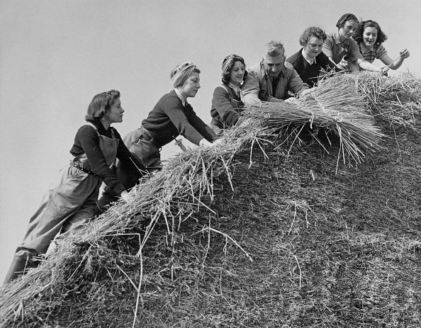 Business Finance and Industry「Women's Land Army」:写真・画像(19)[壁紙.com]