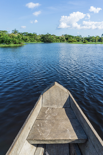 Amazon Rainforest「Beautiful amazon river from canoe」:スマホ壁紙(0)