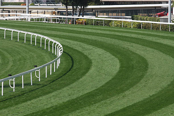 Mowed lawn used as a horse racing track restricted by fence:スマホ壁紙(壁紙.com)