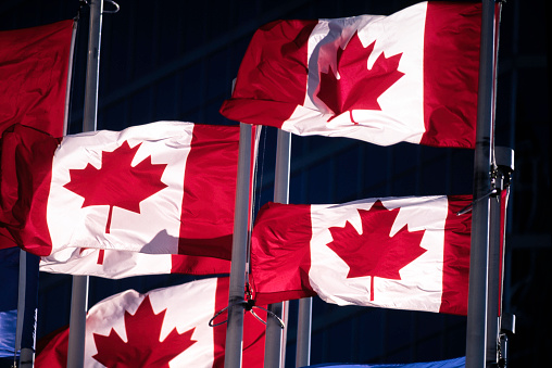 かえでの葉「Group of Canadians Flags」:スマホ壁紙(2)