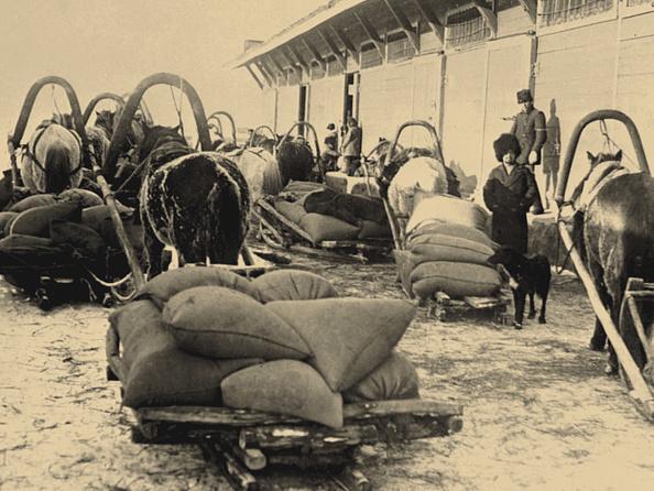 Brigade「The Food Brigade (Prodotryad) In Siberia」:写真・画像(18)[壁紙.com]