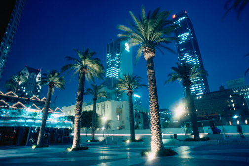 City Of Los Angeles「USA, California, Los Angeles, Civic Center, palms in square, night」:スマホ壁紙(7)