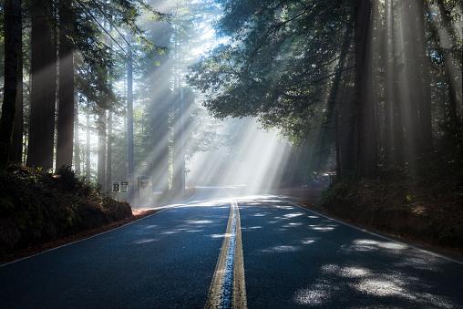 Hope - Concept「USA, California, Highway 1, sunbeams」:スマホ壁紙(5)