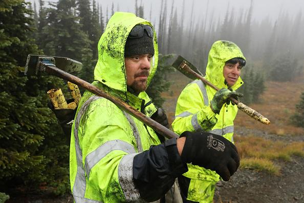 Planting「Montana Forests Struggle With Climate Change」:写真・画像(15)[壁紙.com]