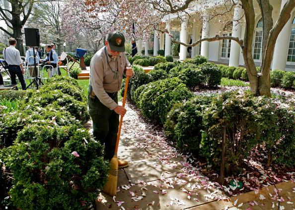 Tree「Bush Honors United States Naval Academy Football Team」:写真・画像(2)[壁紙.com]