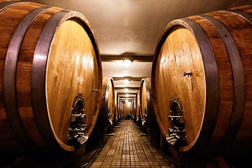 Basement「Wine cellar with a row of barrels」:スマホ壁紙(11)