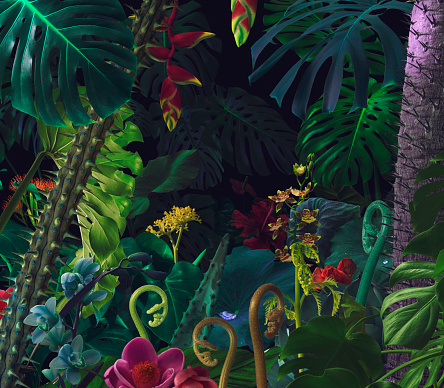 Tropical Flower「Colorful night jungle background」:スマホ壁紙(0)