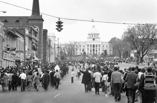 Montgomery March:ニュース(壁紙.com)