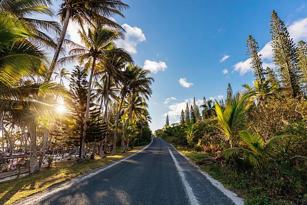 Island Country Road into Sunset New Caledonia:スマホ壁紙(壁紙.com)