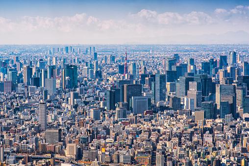 Tokyo Tower「mt jufi and Tokyo skyline, Japan」:スマホ壁紙(2)