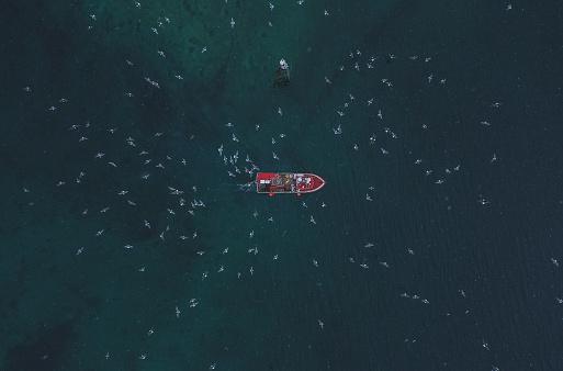 Mountain Peak「Scenic aerial view of fishing boat   in Lofoten Islands in winter」:スマホ壁紙(8)