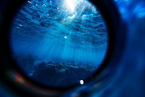 Soft Coral「underwater sunbeams」:スマホ壁紙(1)