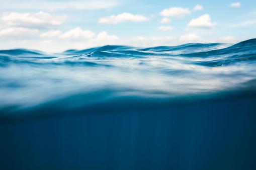 潜水「水中の眺め」:スマホ壁紙(1)