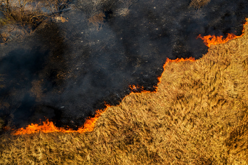 Extreme Weather「Climate emergency.Aerial view of a grass fire burning caused by drought and climate change」:スマホ壁紙(9)