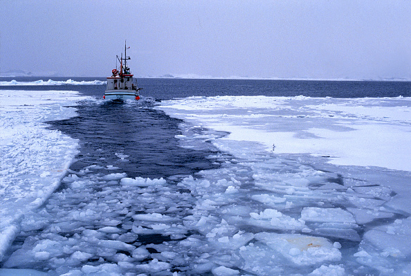Fisher - Role「Fishing cutter in open channel of freezing up ice at morning - Greenland - Denmark」:写真・画像(3)[壁紙.com]