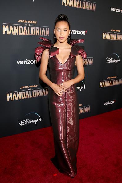 "The Mandalorian - TV Show「Premiere And Q & A For ""The Mandalorian""」:写真・画像(12)[壁紙.com]"